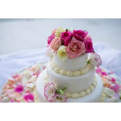 €29 Sophisticated Baking & Cake Design