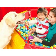 €9 Animal Assisted Therapy Diploma Course