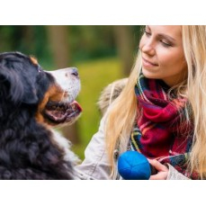 €9 Canine Behaviour Training Diploma Course