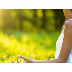 €19 Meditation Diploma Course