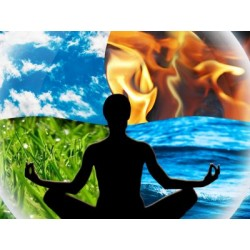 €19 Wicca Diploma Course