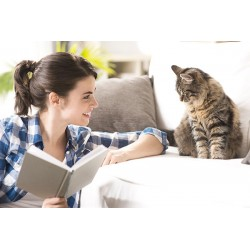 €19 ESSENTIAL CAT AND KITTEN CARE COURSE