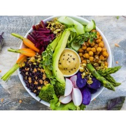 €19 Vegetarian and Vegan Nutritionist Diploma Course