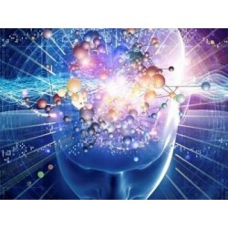 €19 Psychology Course