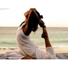 €19 Yoga Diploma Course