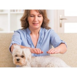 €29 Animal Reiki Diploma Course