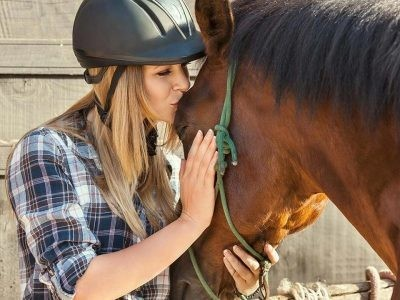 €29 Horse Care & Management Diploma Course
