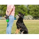 €29 Dog Training Diploma Course