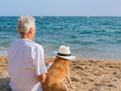 €29 Pet Bereavement Counsellor Diploma Course