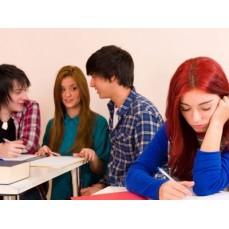 €29 Bullying Awareness Diploma Course