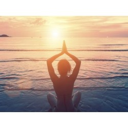 €29 Holistic Health Practitioner Course