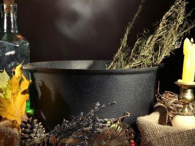 €29 Magical Herbalism Diploma Course