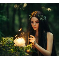 €29 Fairies and Fairy Magic Diploma Course Online