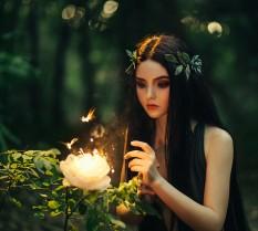 €29 Fairies and Fairy Magic Diploma Course Online