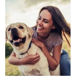 €29 Canine First Aid Diploma Course Online