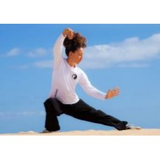 €29 Tai Chi Diploma Course Online