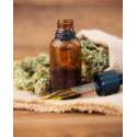€29 Medicinal Cannabis & CBD Oil Diploma Course Online
