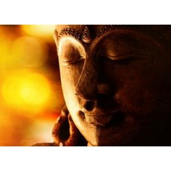 €29 Buddhism Diploma Course Online