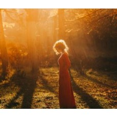 €29 Hedgewitchery Diploma Course Online