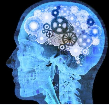 €29 Neuropsychology Diploma Course Online