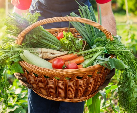 €29 Homesteading Diploma Course Online