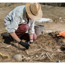 €29 Archaeology Diploma Course Online