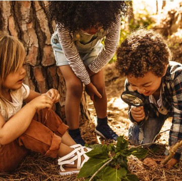 €29 Forest Schooling Diploma Course Online