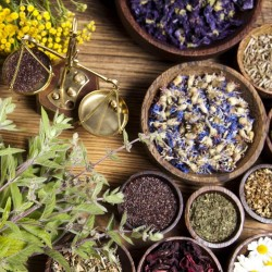 $/£/€10 Advanced Master Herbalist Audio Course