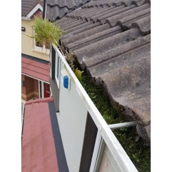 €49 professional gutter cleaning cleaner guttering repair expert price cost dublin leinster